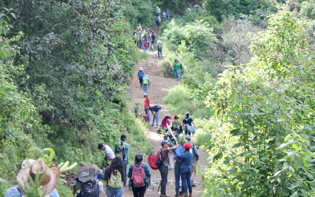 Actividad de reforestacion en la comunidad de Xecán, Cantel